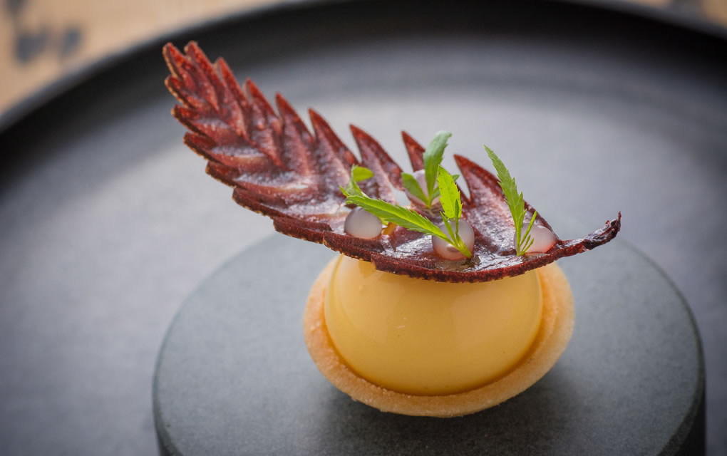 Michelin Star Restaurants in The Lake District for 2020 - Forest side